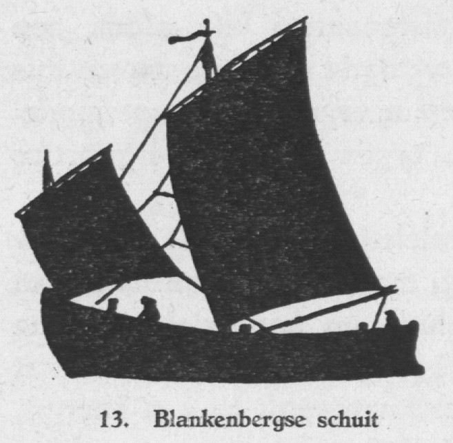 Derolez (1950, fig. 13)