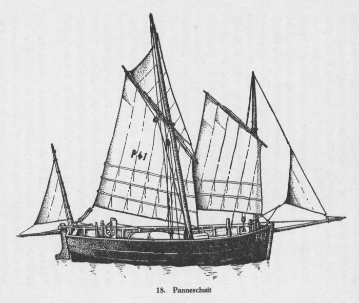 Derolez (1950, fig. 18)