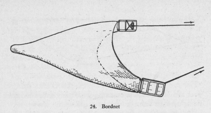 Derolez (1950, fig. 24)