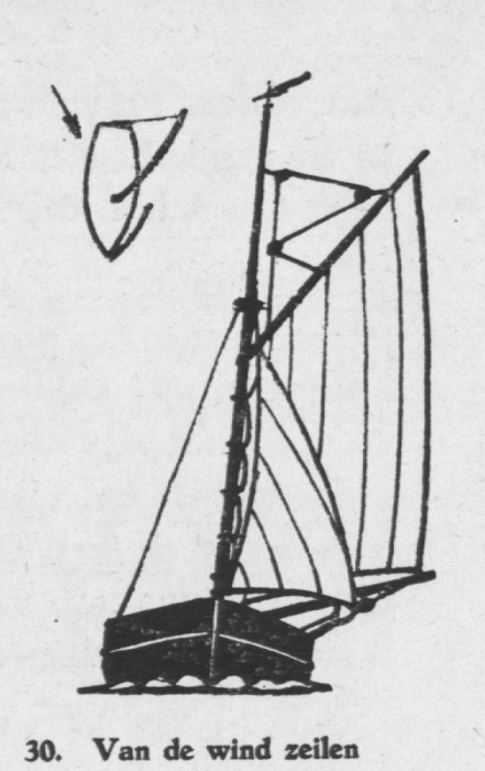 Derolez (1950, fig. 30)