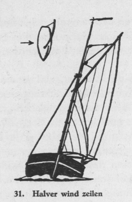 Derolez (1950, fig. 31)