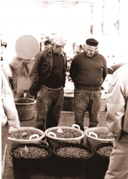 Verkoop van garnalen