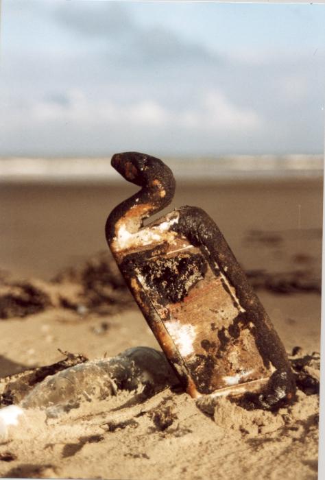 WC-eend besmeurd met olie