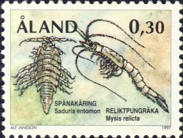 Mysis relicta & Saduria entomon
