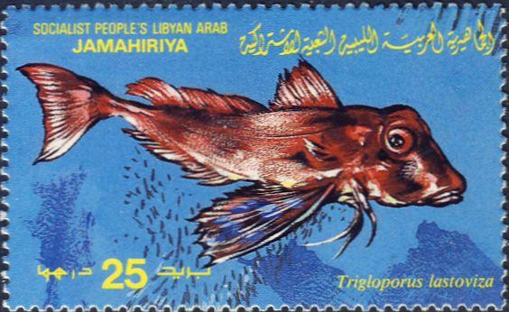 Trigloporus lastoviza