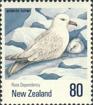 Fulmarus glacialoides