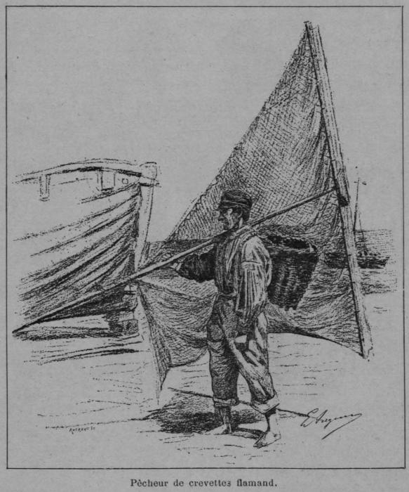 Auguin (1898, fig. 05)