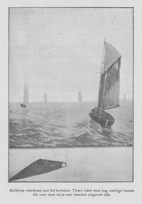 Loontiens (1930, fig. 6)