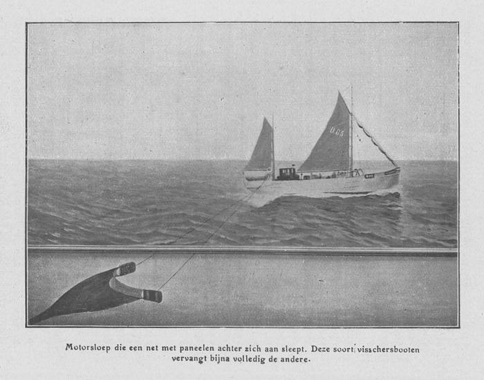 Loontiens (1930, fig. 9)