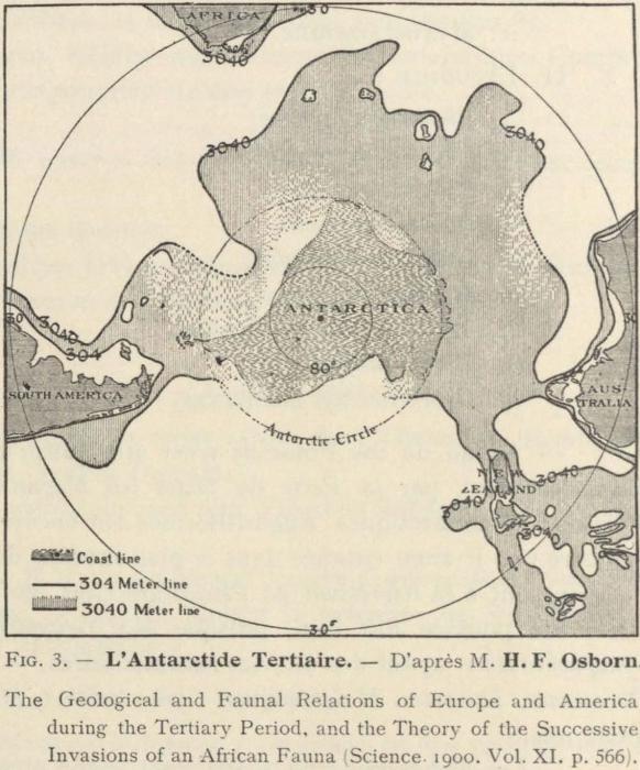 Dollo (1904, fig. 3)