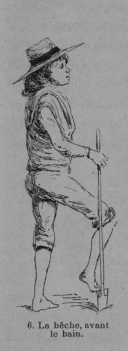Auguin (1899, fig. 06)