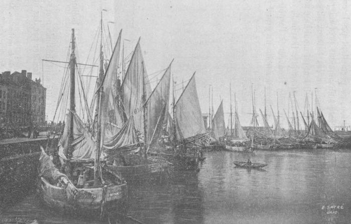 De Zuttere (1909, fig. 09)