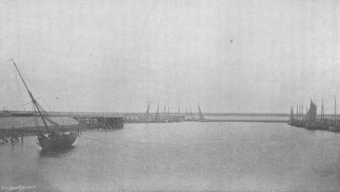 De Zuttere (1909, fig. 15)