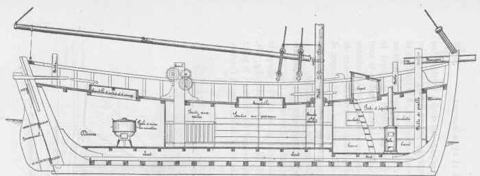 De Zuttere (1909, fig. 20)