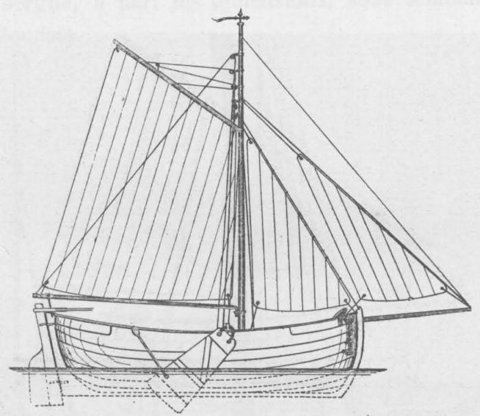 De Zuttere (1909, fig. 24)