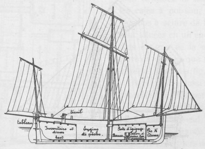 De Zuttere (1909, fig. 27)