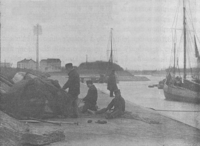 De Zuttere (1909, fig. 38)