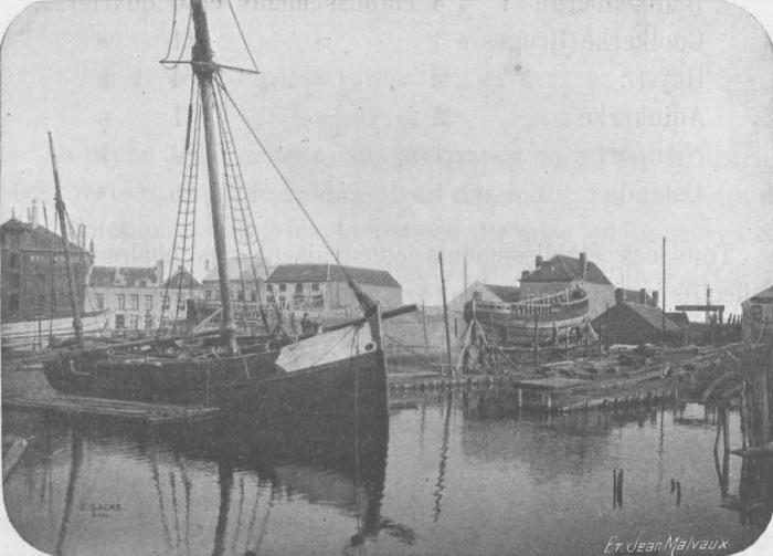 De Zuttere (1909, fig. 39)