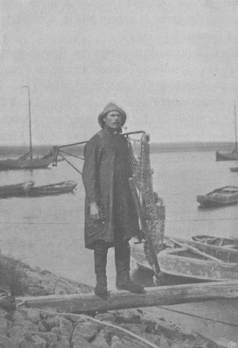 Vermaut, De Zuttere (1914, fig. 01)