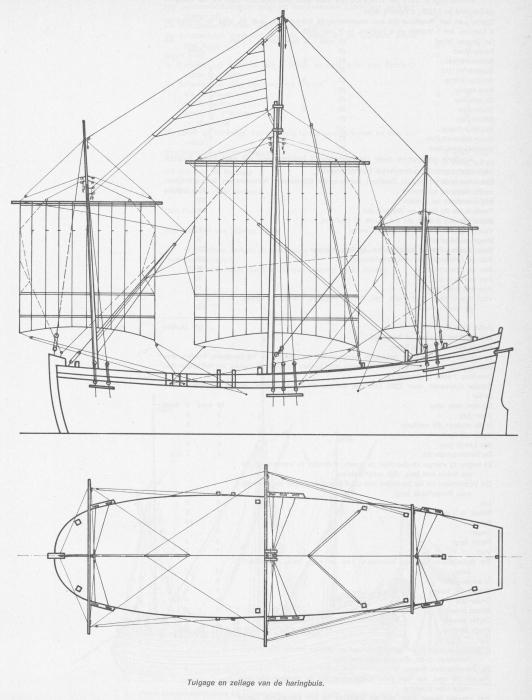 Desnerck (1976, fig. 060)