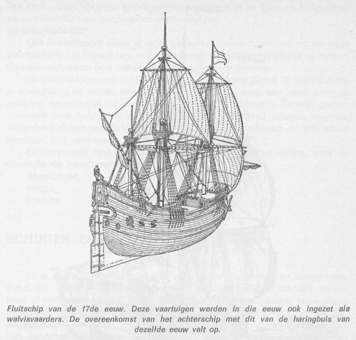 Desnerck (1976, fig. 067)