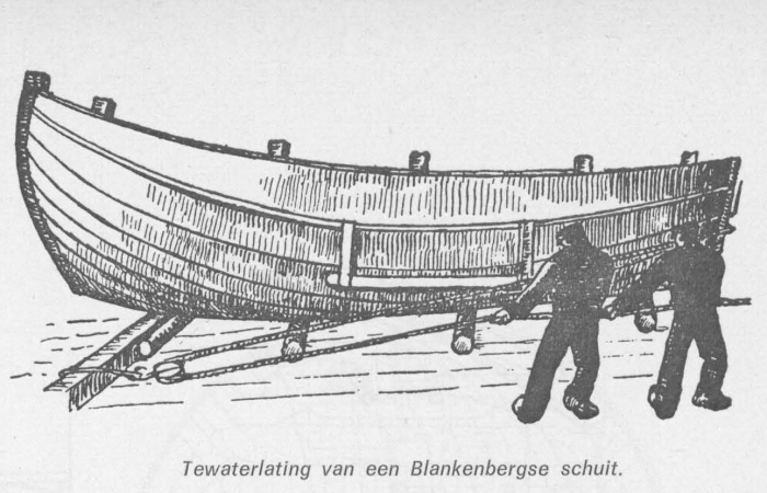 Desnerck (1976, fig. 078)