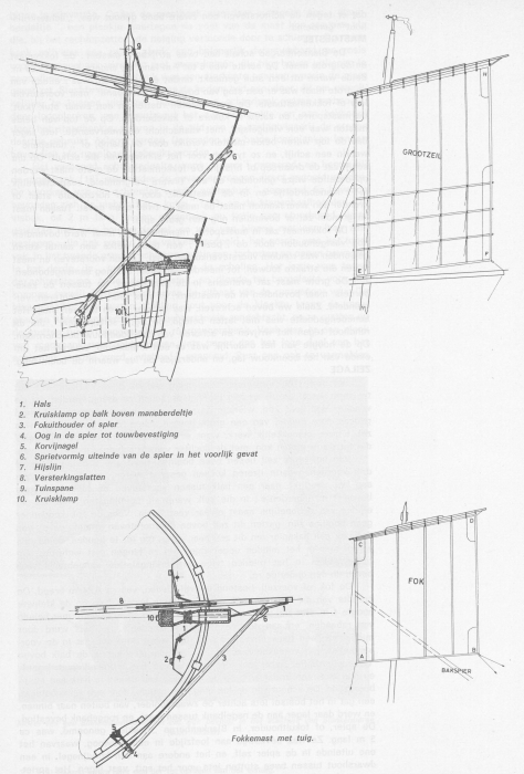 Desnerck (1976, fig. 084)