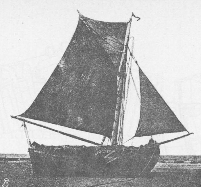 Desnerck (1976, fig. 088)