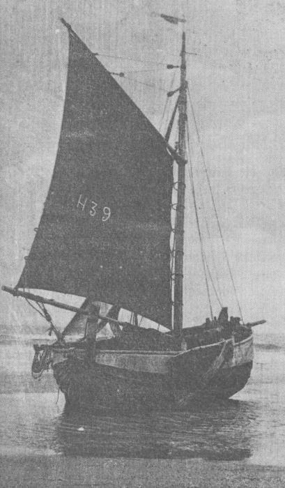 Desnerck (1976, fig. 089)
