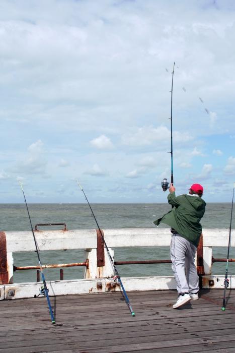 Visser op het Westerstaketsel
