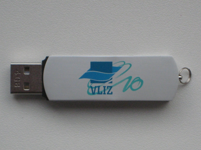 Memorystick 4Gb