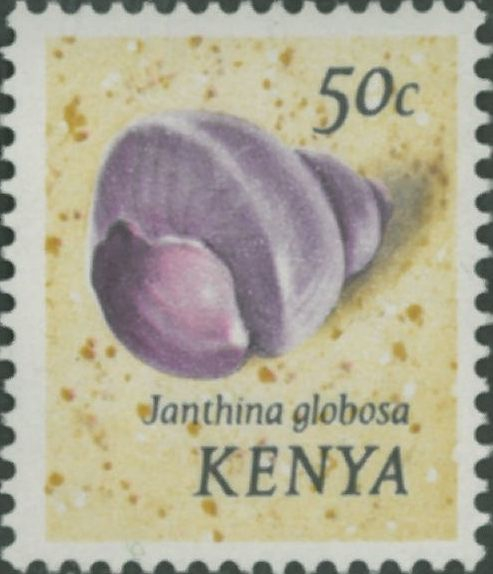 Janthina globosa