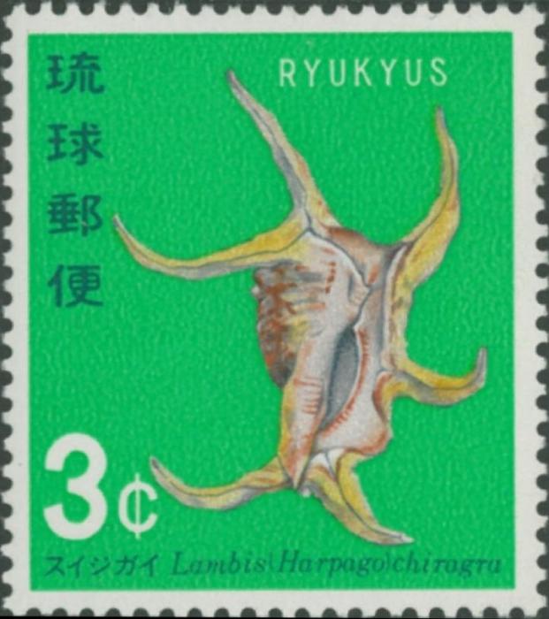 Lambis chiragra