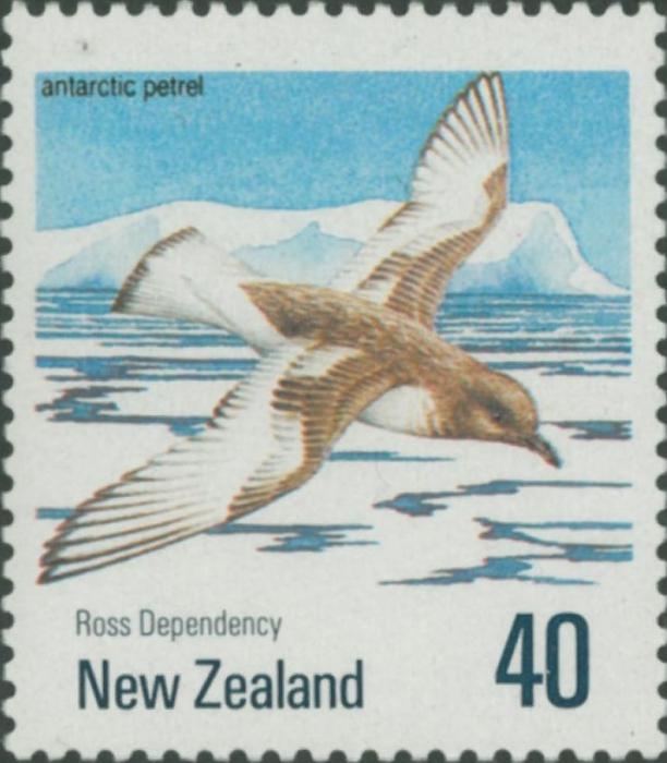 Thalassoica antarctica