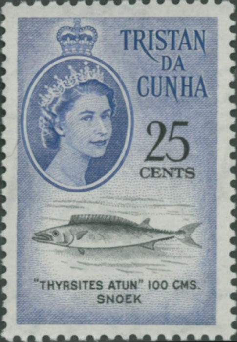 Thyrsites atun