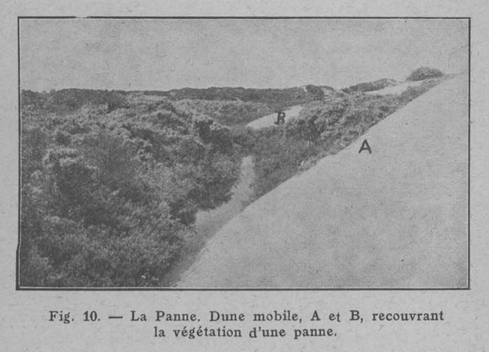 Rahir (1928, fig. 10)