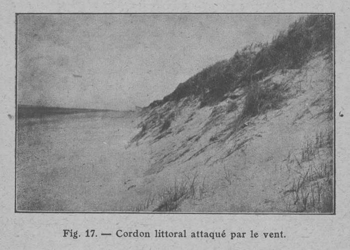 Rahir (1928, fig. 17)