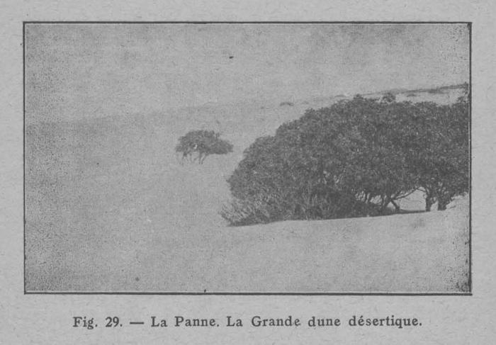 Rahir (1928, fig. 29)