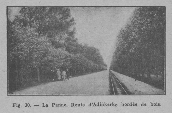 Rahir (1928, fig. 30)