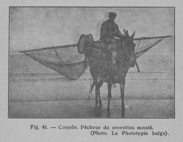 Rahir (1928, fig. 41)