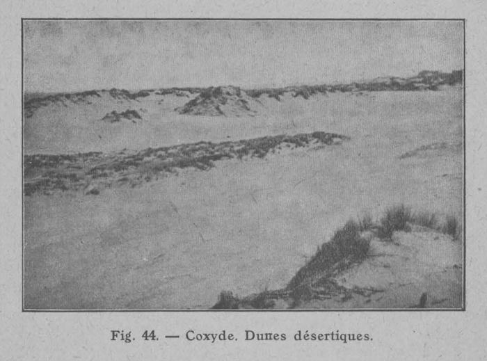 Rahir (1928, fig. 44)