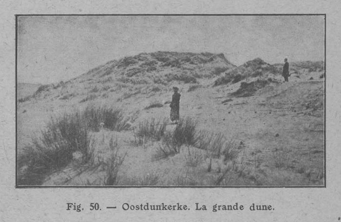Rahir (1928, fig. 50)