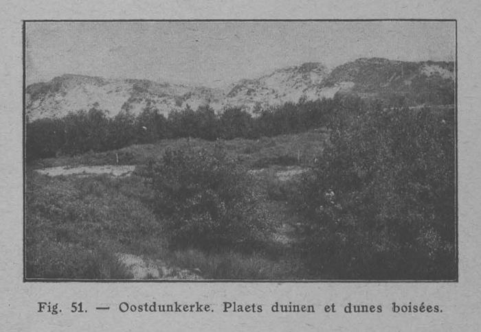 Rahir (1928, fig. 51)