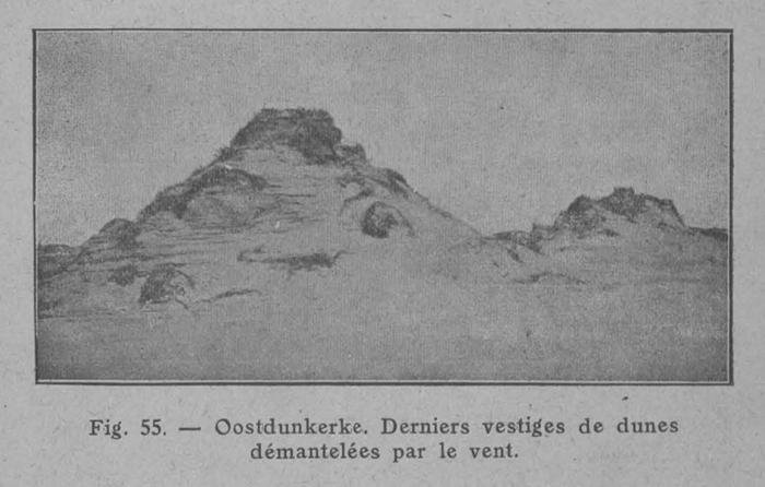 Rahir (1928, fig. 55)