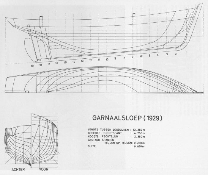 Desnerck (1976, fig. 234)