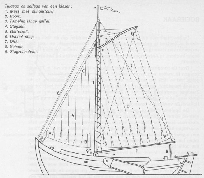 Desnerck (1976, fig. 328)