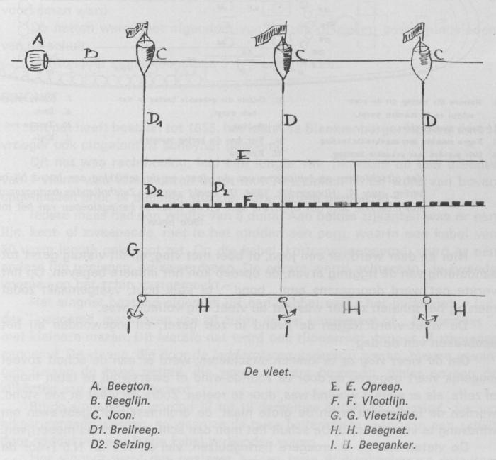 Desnerck (1976, fig. 436)
