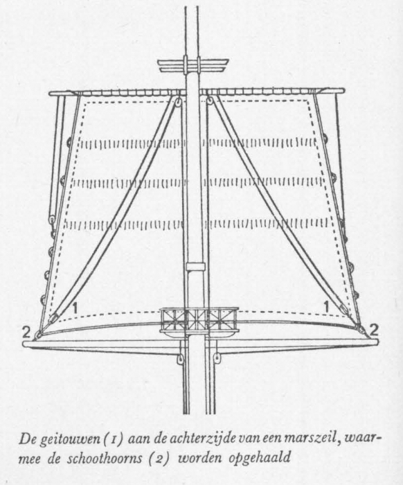 Desnerck (1976, fig. 492)