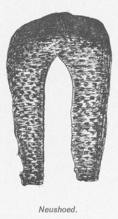 Desnerck (1976, fig. 503)