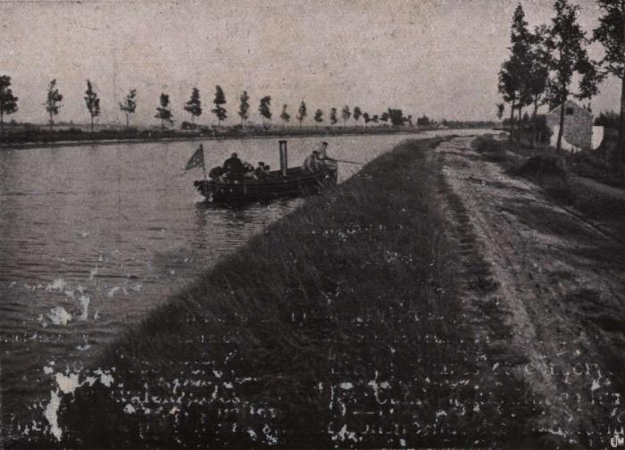 Gilson (1914, fig. 009)